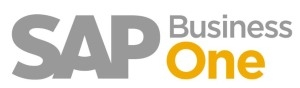 SAP Business-One ERP System Small Management Business Software